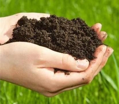 土壤修复与场地调查